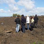 Corte Suprema ordena cesar remoción de tierras por concesiones mineras en humedal de Isla Teja