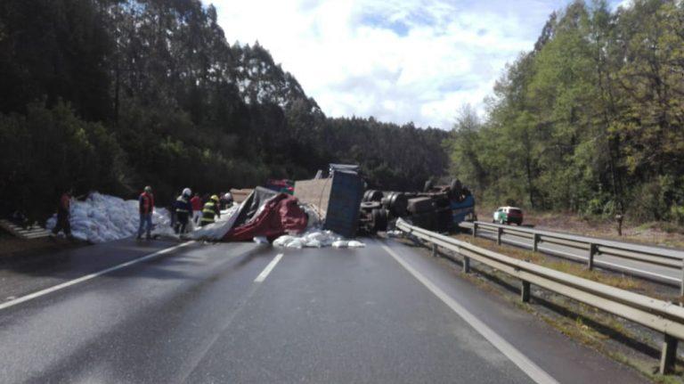 Camión que transportaba maíz volcó en la Ruta 5 Sur en Máfil